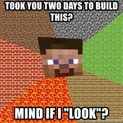 "Minecraft Guy - Took you two days to build this? mind if i ""look""?"