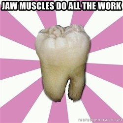 forced tooth - JAW MUSCLES DO ALL THE WORK
