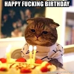 Birthday Cat - happy fucking birthday