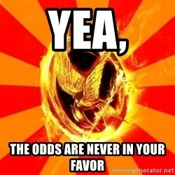Typical fan of the hunger games - Yea, The odds are never in your favor