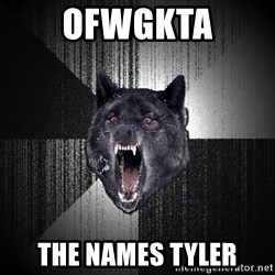 Insanity Wolf - OFWGKTA the names Tyler