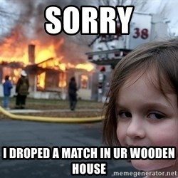 Disaster Girl - sorry i droped a match in ur wooden house