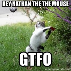 GTFO - hey nathan the the mouse gtfo