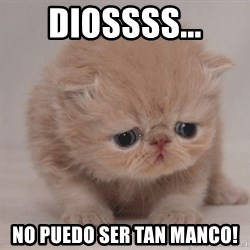 Super Sad Cat - DIOSSSS... NO PUEDO SER TAN MANCO!