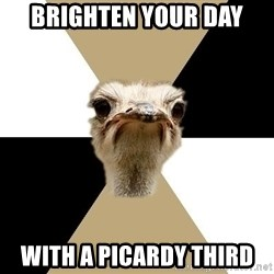 Music Major Ostrich - Brighten your day with a picardy third