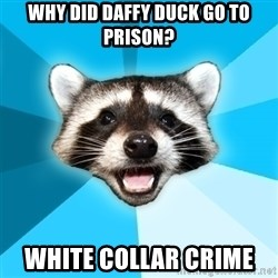 Lame Pun Coon - Why did daffy duck go to prison? White collar crime