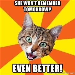 Bad Advice Cat - SHE WON'T REMEMBER TOMORROW? EVEN BETTER!