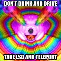 Final Advice Dog - don't drink and drive take lsd and teleport