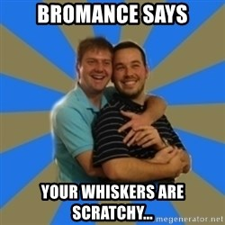 Stanimal - Bromance says Your whiskers are scratchy...