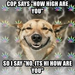 """Stoner Dog - Cop says """"how high are you"""" so i say """"No, its hi how are you"""""""