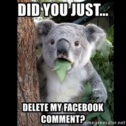 Koala can't believe it - Did you just... delete my facebook comment?