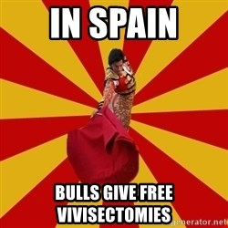 Typical_Spain - In spain Bulls give free vivisectomies