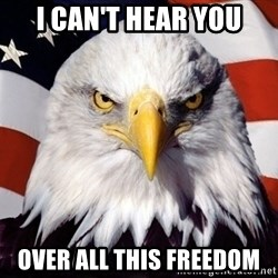 American Pride Eagle - i can't hear you over all this freedom