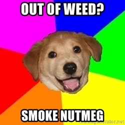 Advice Dog - out of weed? smoke nutmeg