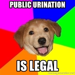 Advice Dog - public urination is legal