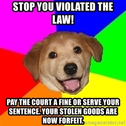 Advice Dog - STOP YOU VIOLATED THE LAW! Pay the court a fine or serve your SENTENCE. your stolen goods are now forfeit.