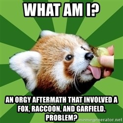 Red Panda - What am i? AN orgy aftermath that involved a Fox, raccoon, and garfield. Problem?