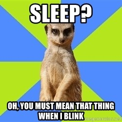Med Student Meerkat - Sleep? Oh, you must mean that thing when i blink