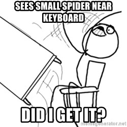 flip a table2 - sees small spider near keyboard did i get it?