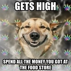 Stoner Dog - GETS HIGH SPEND ALL THE MONEY YOU GOT AT THE FOOD STORE