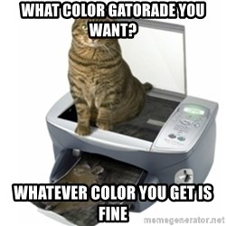 COPYCAT - what color gatorade you want? whatever color you get is fine