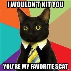 Business Cat - I WOULDN'T KIT YOU YOU'RE MY FAVORITE SCAT