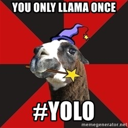 Epic Level Llama - YOU ONLY LLAMA ONCE #YOLO