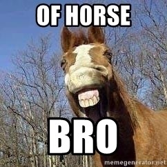 Horse - of h0rse bro