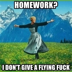 IDGAF - HOMEWORK? I DON'T GIVE A FLYING FUCK