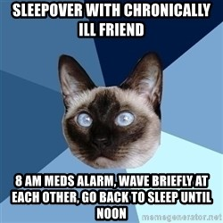 Chronic Illness Cat - sleepover with chronically ill friend 8 am meds alarm, wave briefly at each other, go back to sleep until noon
