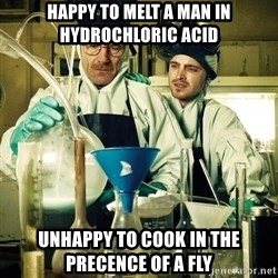 breaking bad - happy to melt a man in hydrochloric acid unhappy to cook in the precence of a fly
