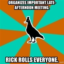 QA Pigeon - organizes important late-afternoon meeting. rick rolls everyone.