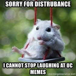 Sorry I'm not Sorry - Sorry for distrubance i cannot stop laughing at UC memes