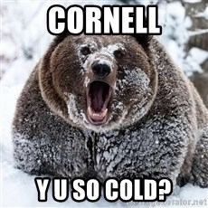 Cocaine Bear - Cornell Y U so cold?
