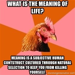 Anti Joke Chicken - What is the meaning of life? meaning is a subjective human contstruct cultured through natural selection to keep you from killing yourself.
