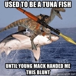 raptor shark - used to be a tuna fish until young mack handed me this blunt