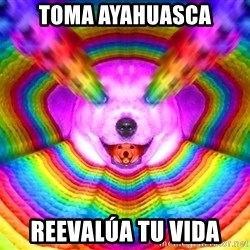 Final Advice Dog - Toma ayahuasca reevalúa tu vida