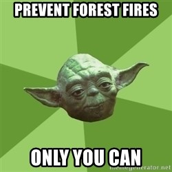 Advice Yoda Gives - prevent forest fires only you can