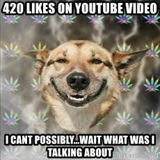 Original Stoner Dog - 420 likes on youtube video i cant possibly...wait what was i talking about