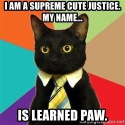 Business Cat - i am a supreme cute justice. my name... is learned paw.