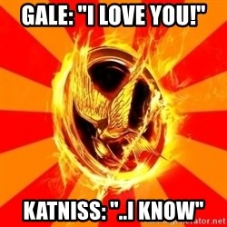"""Typical fan of the hunger games - Gale: """"I LOVE YOU!"""" katniss: """"..I KNOW"""""""