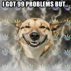 Stoner Dog - I GOT 99 PROBLEMS BUT...
