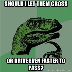 Philosoraptor - should i let them cross or drive even faster to pass?
