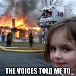Disaster Girl - the voices told me to
