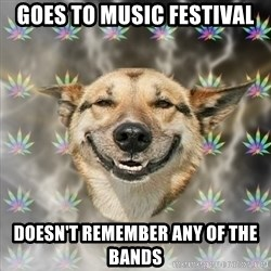 Stoner Dog - goes to music festival doesn't remember any of the bands
