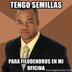 Successful Black Man - tengo semillas para filodendrus en mi oficina