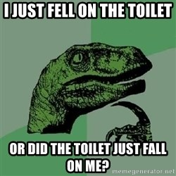 Philosoraptor - I JUST FELL ON THE TOILET OR DID THE TOILET JUST FALL ON ME?