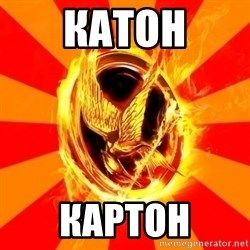 Typical fan of the hunger games - КАТОН КАРТОН