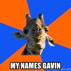 Douchebag Giraffe - MY NAMES GAVIN