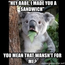 "Koala can't believe it - ""hey babe, i made you a sandwich"" you mean that wansn't for me?"